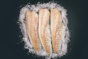 Frischer Fisch Fotoshooting